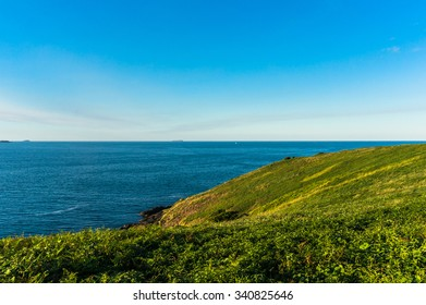 Beautiful ocean view and green grassy hill with clear sky on the background with space for text. Coffs Harbour, Australia