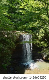 Beautiful Ohiopyle State Park located in Pennsylvania. Summer tourism and vacation destination.  Cucumber Falls located in the beautiful woods of Western Pennsylvania.