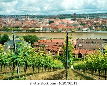 The beautiful old city of Wurzburg behind vineyard