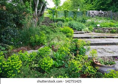 Beautiful old garden with stone stairs in Spring time