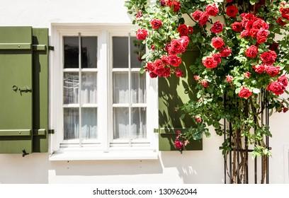beautiful old window - close up