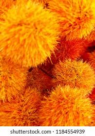 Beautiful orange flower display.