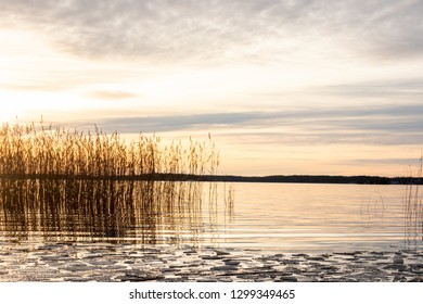 Beautiful orange winter landscape sunset over calm lake water with ice floe and reed against sea horizon.