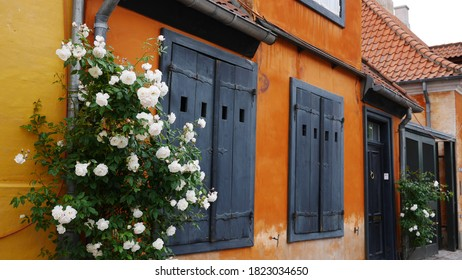 Beautiful orange and yellow house wall with blue shutters and white flowers in Copenhagen, Denmark