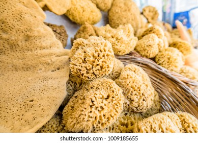 Beautiful organic healthy natural sponges small big pieces from the mediterranean sea on a greek island, Kalymnos, Kos, Greece