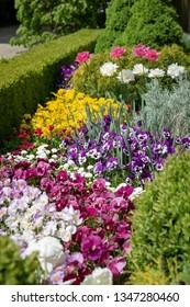 Beautiful ornamental flowerbed with spring flowers.