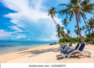 Beautiful outdoor view with umbrella and chair on the beach and sea with coconut palm tree for vacation and travel