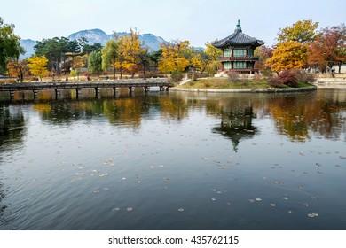 The beautiful Palace in autumn,Seoul