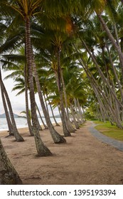 Beautiful Palm Cove in Cairns, Australia at sunset.