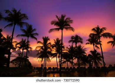 Beautiful palm tree silhouette and colorful Sunset at kata Beach  ,Phuket ,Thailand