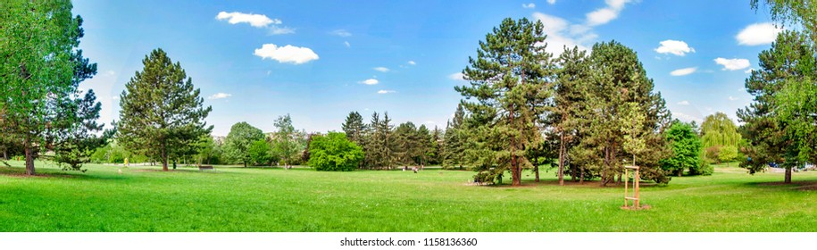 Beautiful panorama of czech nature. Trees, green grass in summer. Panoramic shot in Prague park