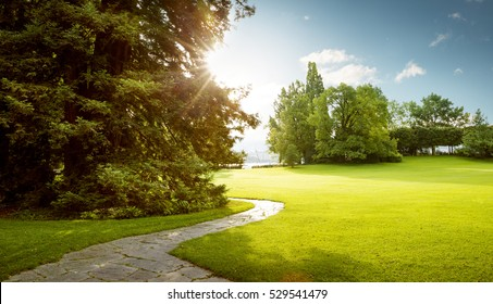Beautiful panorama of green city park at dawn - Shutterstock ID 529541479