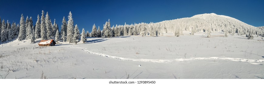 Beautiful panorama of idyllic winter landscape with cute mountain hut in mountains of Slovakia.