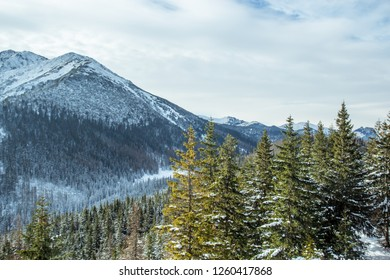 Beautiful panorama of the snow covered mountain range