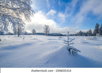 beautiful panorama from a snowlandscape in the black forest in winter