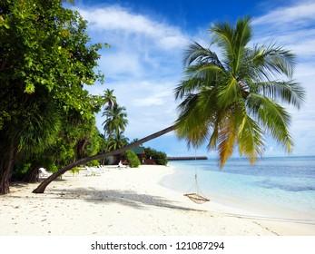 Beautiful panorama of tropical island. Maldives