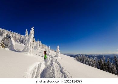 Beautiful panorama with young tourist having long trekking taken in polish mountains Beskidy on the way to Rysianka during snowy winter. Landscape with people.