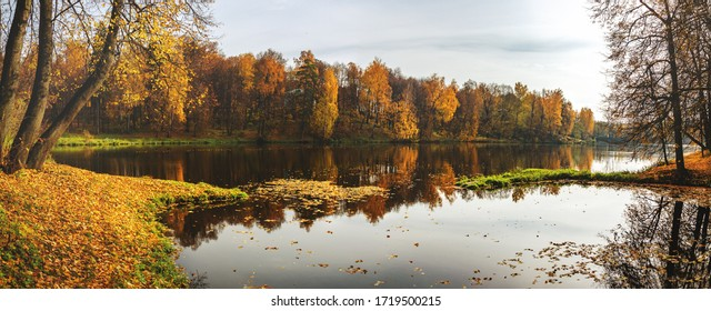 Beautiful panoramic autumn nature landscape.Sunny autumn scene with trees with orange and red leaves reflecting on water surface.Calm lake or pond in old park.Concept of beauty of autumn nature.