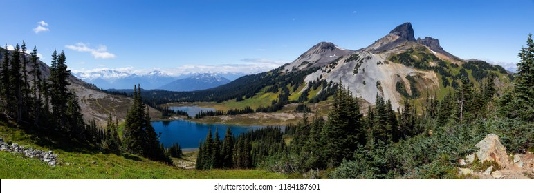 Beautiful panoramic Canadian Mountain Landscape view during a vibrant sunny summer day. Taken in Garibaldi Provincial Park, located near Whister and Squamish, North of Vancouver, BC, Canada.