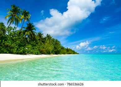 Beautiful panoramic landscape of tropical Maldives island with palms and sandy beach of crystal water of the Indian Ocean