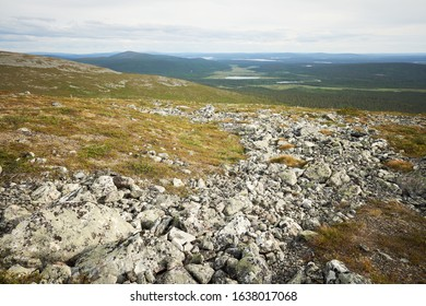 Beautiful panoramic view from a fell over forests, lakes and marshes of Lapland. Pallas-Yllästunturi National Park, Finland.