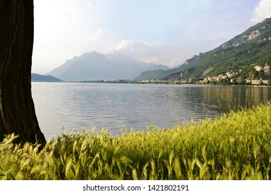 Beautiful panoramic view to the lake Garlate near Lecco with high grass meadow in forefront.
