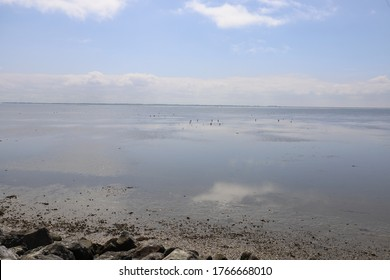 Beautiful panoramic view over the Sea at very low tide with a blue sky.
