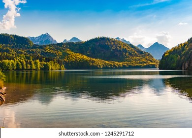 A beautiful panoramic view of the popular Alpsee lake surrounded by a protected forest landscape with the Alps in the background under a blue sky in the Ostallgäu district of Bavaria, Germany.