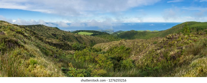 Beautiful panoramic view of the Sao Miguel Azores island nature with lush green fields, tree and hills and ocean on the horizon near Cha Gorreana tea plantation