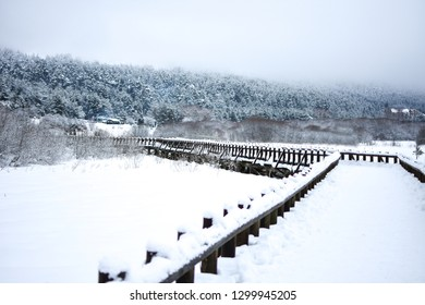 Beautiful panoramic view of winter landscape with many snow and spruce trees. The Abant Lake Natural Park Karadeniz (Black Sea) Region. Winter Holidays and outside activity.