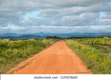 Beautiful Pantanal landscape, South America, Brazil. Sandy road to horizon