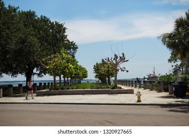 Beautiful park with green trees on the shore of the bay. Tourist with a map in the park. Joe Riley Waterfront Park. Charleston, SC / USA - July 21 2018