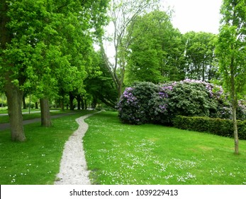 Beautiful park with pathway, trees and green field