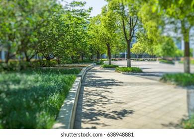 beautiful park at a sunny day, shanghai, china.