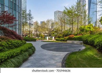 beautiful park at a sunny day, shanghai, china.