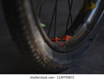 Beautiful parts of a bicycle wheel with metallic sporks unique photo