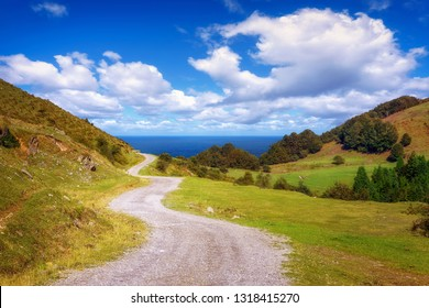 beautiful path near the sea on sunny day
