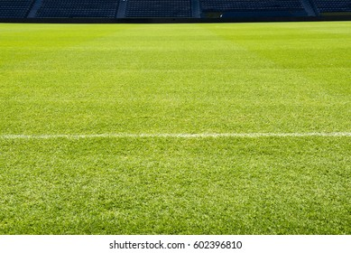 beautiful pattern of fresh green grass for football sport, football field, soccer field, team sport texture