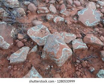 Beautiful patterns of lichen among red rocks found on a trail in Sedona, Arizona