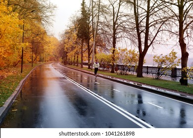 Beautiful paved road in the autumn forest after rain