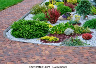 Beautiful paving stones, bright flowers and shrubs. Pebble gravel and ornamental plants. Landscaping.