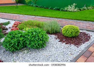 Beautiful paving stones, flowers and shrubs. Pebble gravel and ornamental plants. Green lawn. Landscaping.