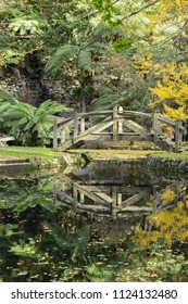 A beautiful peaceful autumn scene in the park during the rain