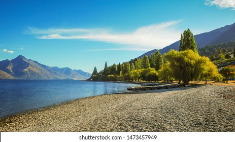Beautiful peaceful summer scenery on lakeside with reflection and tree branches at foreground