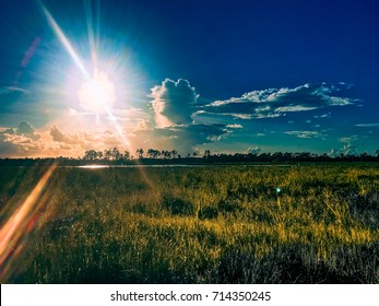 beautiful and peaceful sunset in the marshes of a swamp