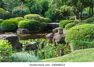 The beautiful peaceful view on the small lake with rocks, birds ibis, little japanese lighting appliance and water lilies in Japanese Garden, Brisbane Botanical Garden, Australia