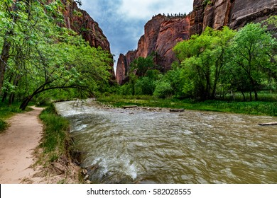 Beautiful Peaks, Cliffs and Rock Formations Along a Roaring River in Zion National Park, Utah.