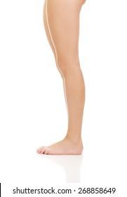 Beautiful perfect female slim legs.