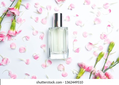 Beautiful perfume bottles  and pink carnations on white background