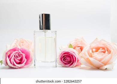 Beautiful perfume bottles  and rose on white background